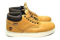Зимние ботинки (на меху) мужские Timberland 11-070 ⏩ [ 43,44,45 ], фото 1