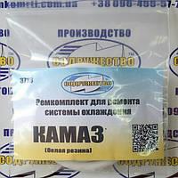 Ремкомплект системы охлаждения КамАЗ (силикон)
