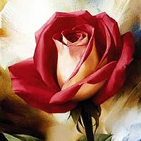 """Набор алмазной вышивки (мозаики) """"Красная роза"""""""