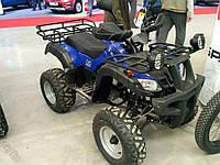 Квадроцикл Spark SP250-4 (250 куб.см.), фото 1