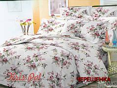 Евро-макси набор постельного белья 240*220 из Полиэстера №854512 KRISPOL™