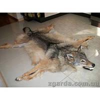 Шкура с волка