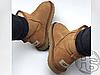 Женские угги UGG Classic Mini II Boot Chestnut 1016222, фото 2