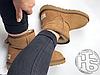 Женские угги UGG Classic Mini II Boot Chestnut 1016222, фото 4
