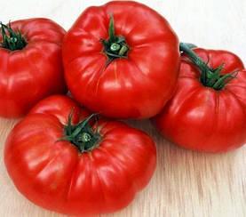 Томат Медвежья лапа высокорослый среднеспелый томат с красными плоско округлыми плодами сорт сибирской селекци