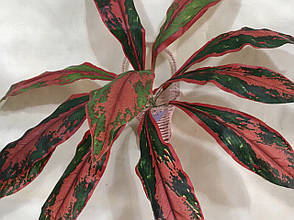 Искусственное растение.Искусственные кусты., фото 3