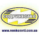 Ремкомплект гидроцилиндра подъёма кузова автомобиль МАЗ-5516 / МАЗ-503 3-х штоковый, фото 5