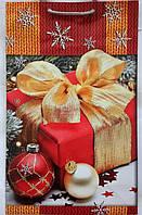 Пакет подарочный бумажный средний 16х25х7 (23-117)