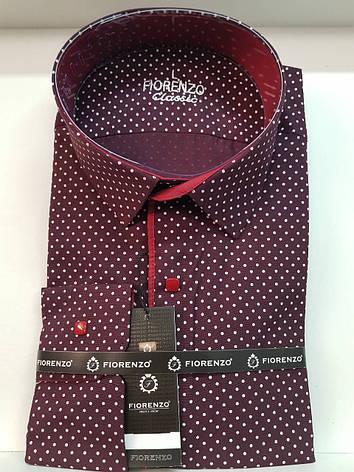 Рубашка Fiorenzo с принтом на кнопке, фото 2