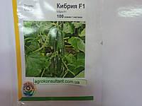 Семена огурца Кибрия F1 (Rijk Zwaan/ АГРОПАК+) 100 семян — партенокарпический корнишон, фото 1