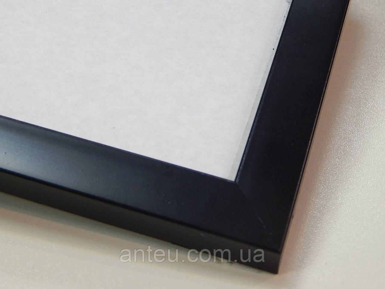 Рамка А2 (420х594)Антибликовое стеклоРамка пластиковая 22 мм.Черный матовый.