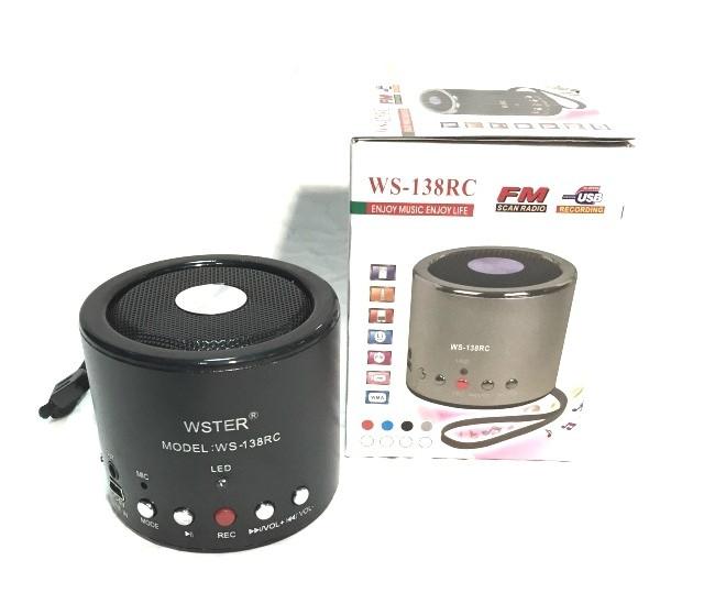 Портативная Bluetooth колонка WSTER WS-138 RC с MP3, USB и FM-pадио с функцией записи