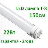 Лампа світлодіодна Т8 150см 22Вт (алюміній), фото 3