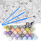 Картина по номерам Игривая кошечка, 40x50 (КНО4510), фото 4