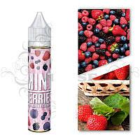 Жидкость Monster Flavor - Mint Berries (Мятные Ягоды), 3 mg