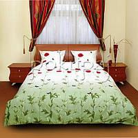 Постельное белье ТЕП евро стандарт 200*215 маки зеленые 533