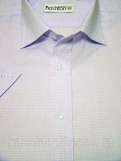 Мужская рубашка белого цвета в мелкую фиолетовую клетку с коротким рукавом