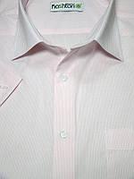 Мужская рубашка  в мелкую розовую полоску с коротким рукавом в мелкую полоску