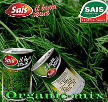 Семена, укроп кустовой, жаростойкий ДАРК / DARK (темно-зеленый), 500 г банка, SAIS (Италия)