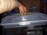 Тортница пластиковая прямоугольная 44*30*9,5см, с крышкой на зажимах Алеана, фото 1