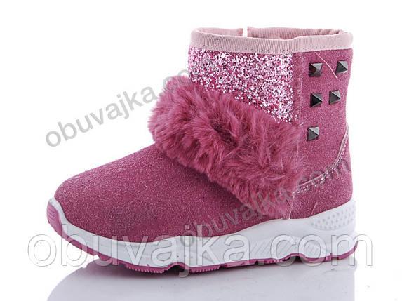 Зимняя обувь оптом Зимние ботинки для девочек 2019 от фирмы GFB(27-32)Xifa, фото 2