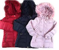 Куртки для девочек утеплённые оптом , размеры 12-36 мес, Nature, арт. RSG-5521, фото 1