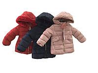 Куртки для девочек утеплённые оптом, размеры 12-36 мес, Nature, арт. 5515