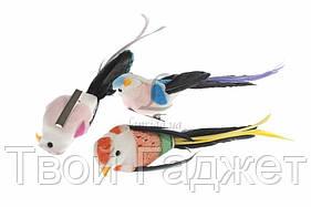 ОПТ/Розница Птички декоративные