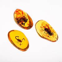 """Кулон """"Коллекция насекомые"""" в янтарной смоле (акрил.) 4х6см"""