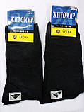 """Шкарпетки чоловічі """"ЖИТОМИР"""", лайкра , р-р 27-29., фото 3"""