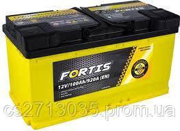 Автомобильный аккумулятор FORTIS 100Ач 920А (0) R