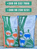 Защищенный жир Шен Кау Е84