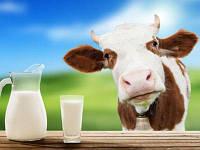 "ЗЦМ ""SHENCON"" (с 5 дня 80% молока) Сухое Молоко для телят, поросят"