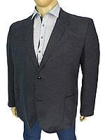 Серый мужской пиджак Dekons 4064 Antrasit в большом размере