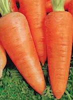 Семена моркови Шантане Сквирская