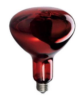 Инфракрасная лампа 230V, 150W E27/5000h, HELIOS (Польша), фото 2