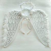 Крылья ангела с нимбом