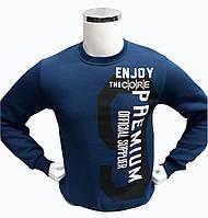 Кофта теплая мужская Daniel Jones толстовка с надписью Enjoy Синяя