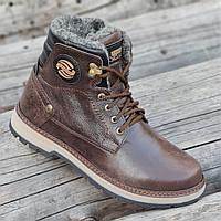 Зимние мужские высокие ботинки сапоги кожаные коричневые натуральный мех на полиуретановой подошве (Код: 1288)