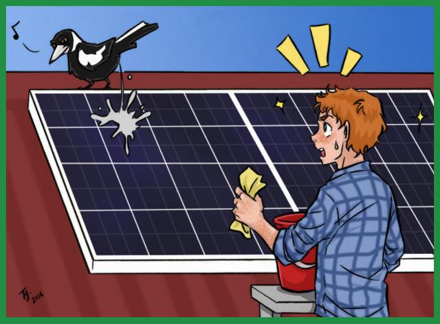 Загрязнение солнечных панелей