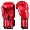 Боксерские перчатки TopTen DX (8,10,12 унций), фото 4