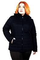 Куртка Дина осень 54-70 синий
