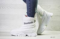 Женские зимние ботинки Reebok в стиле Рибок ( 5 цветов)