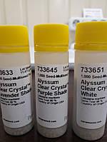 Алиссум Clear Crystal White/1000 семян/PanAmericanSeed