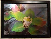 """Картина на стену трёхмерная с 3D объёмным эффектом """"Цветы"""", фото 1"""