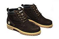 Зимние ботинки (на меху) женские Timberland (реплика) 13046, фото 1