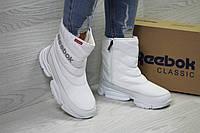 Сапоги зимние женские в стиле Reebok код товара SD-6559. Белые
