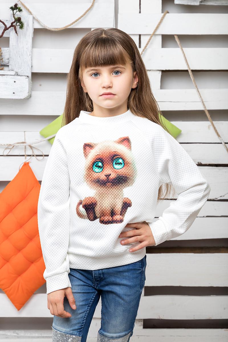 Свитшот детский Кошка молоко