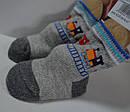 Носки для новорожденных Поезда (Oztas, Турция), фото 3