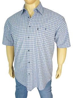 Чоловіча сорочка Desibel 0340 indigo великих розмірів